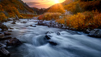 Gold Autumn Palette | Waterton Canyon, CO